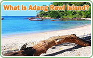 What is Adang Rawi Island
